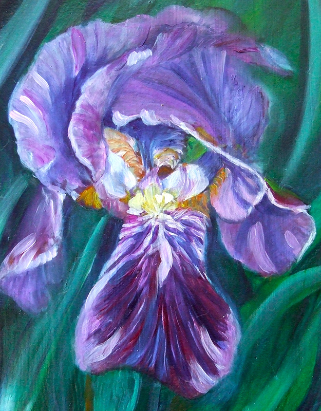 Violet mountains and violet petals